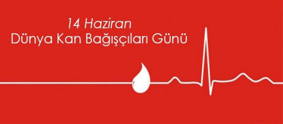 14 Haziran Dünya Kan Bağışları