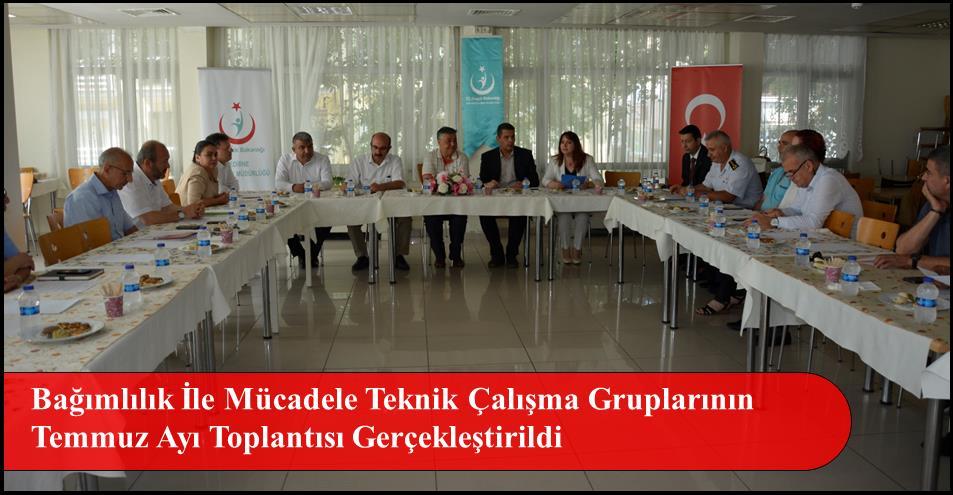 Bağımlılık İle Mücadele Teknik Çalışma Gruplarının Temmuz Ayı Toplantısı Gerçekleştirildi