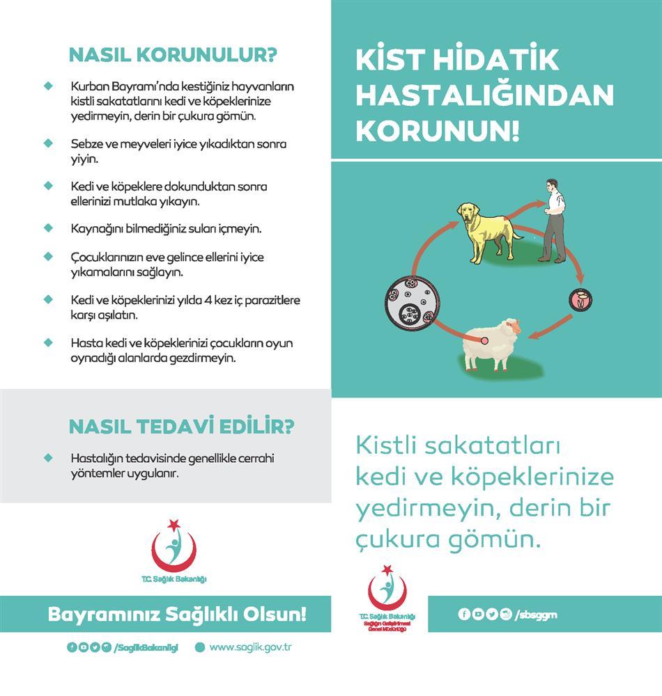 kisthidatikbrosur_Sayfa_1.png