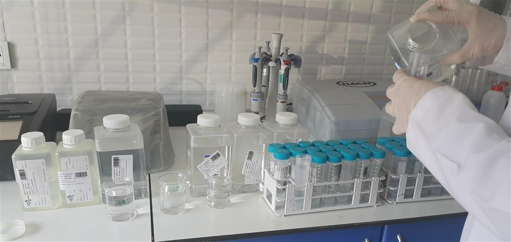 Klinik Dışı (Su) Laboratuvar Analizleri