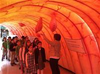 Maketi gezen öğrenciler öğrendiklerini İl Sağlık Müdürümüze sundular.