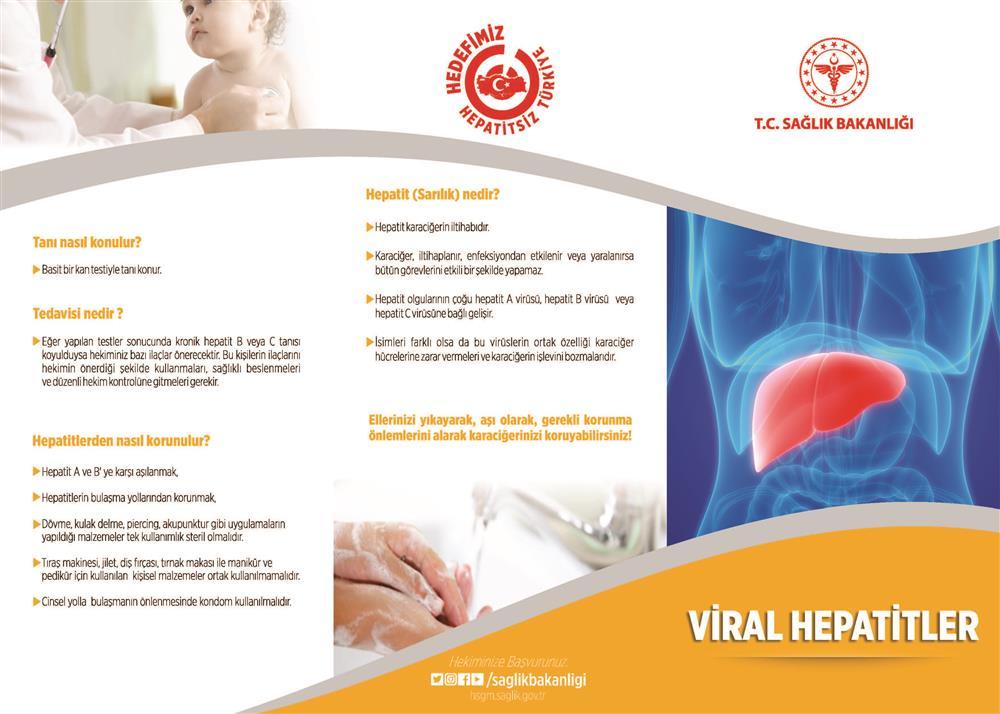br_4 Hepatit_Sayfa_1.jpg