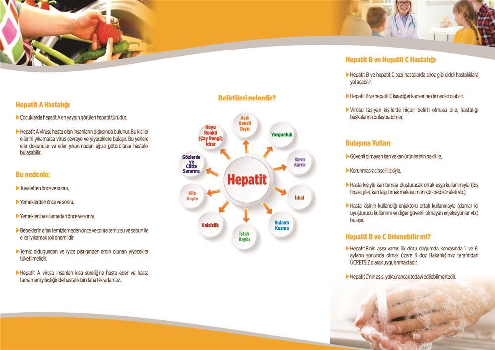 br_4 Hepatit_Sayfa_2.jpg