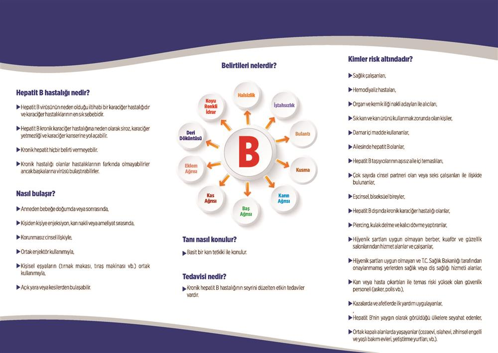 br_6 Hepatit_Sayfa_2.jpg