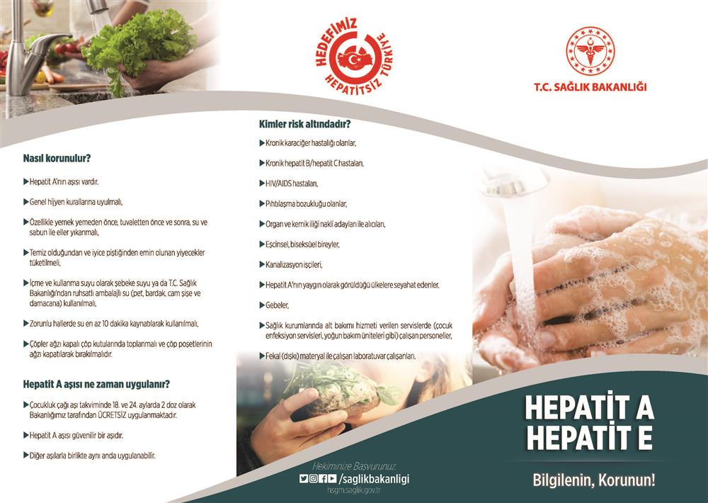 br_1 Hepatit_Sayfa_1.jpg