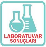 Laboratuvar Sonuçları