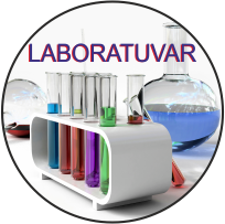 Hastane Lab. Sonuçları