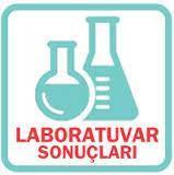 Laboratuvar Sonuçlarım