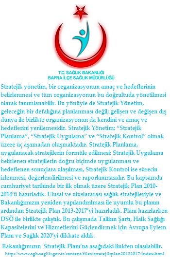strateji.png